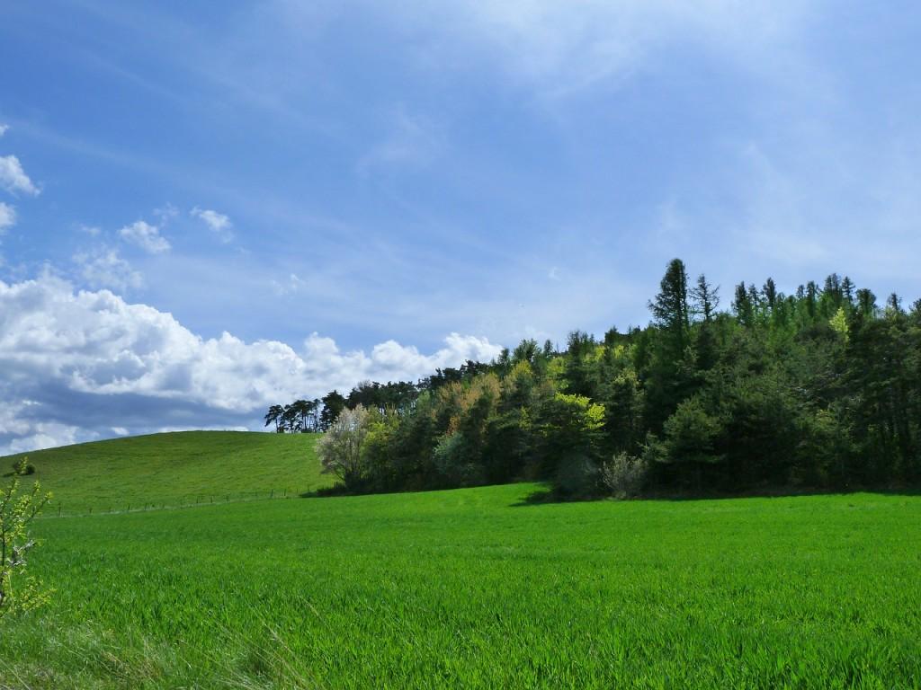 landscape-336142_1280