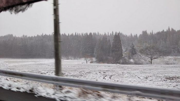 31日の雪